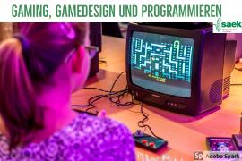 Gaming, Gamedesign und Programmieren